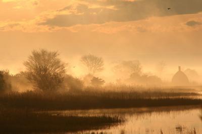 Hajnali madárles (hangulat) /fotó: Molnár Balázs/